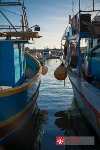 Boats moored at Marsaxlokk waiting for their next trip out to sea.