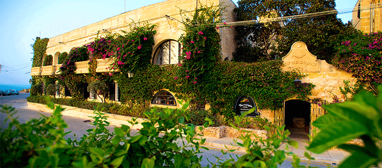 The Cornucopia Hotel is located in a quiet place near the centre of Gozo.
