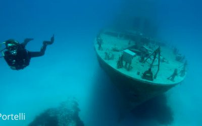 The 28 Best Shore Dive Sites in Malta and Gozo